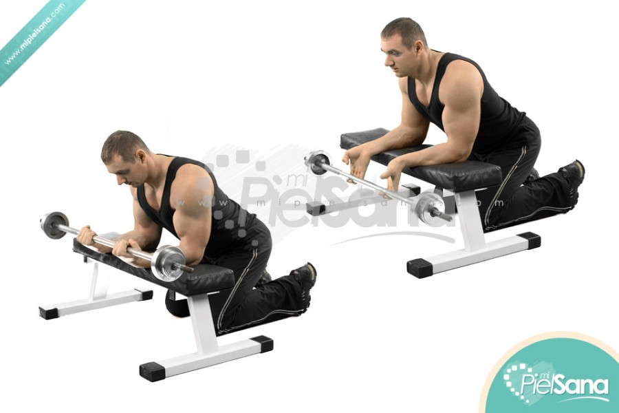 Barbell Wrist Curl Over Bench