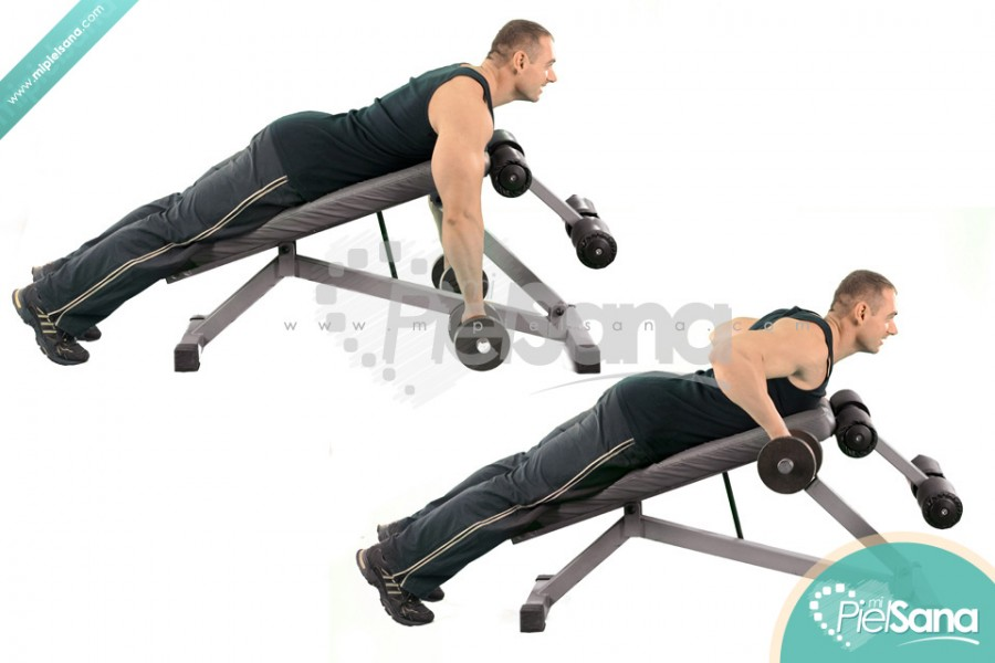 Incline Bench Two Arm Dumbbell Row
