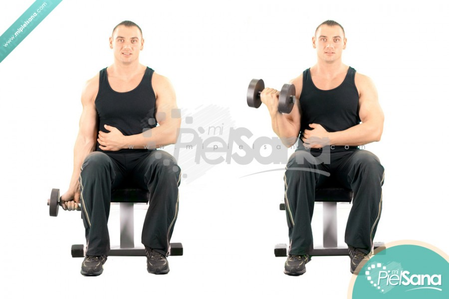 One Arm Seated Dumbbell Curl