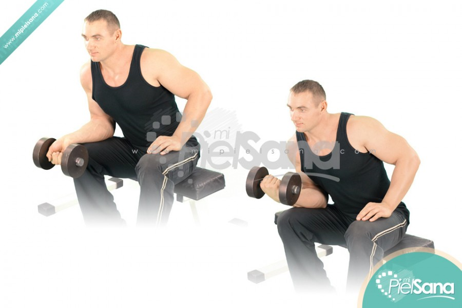 One Arm Seated Dumbbell Wrist Curl