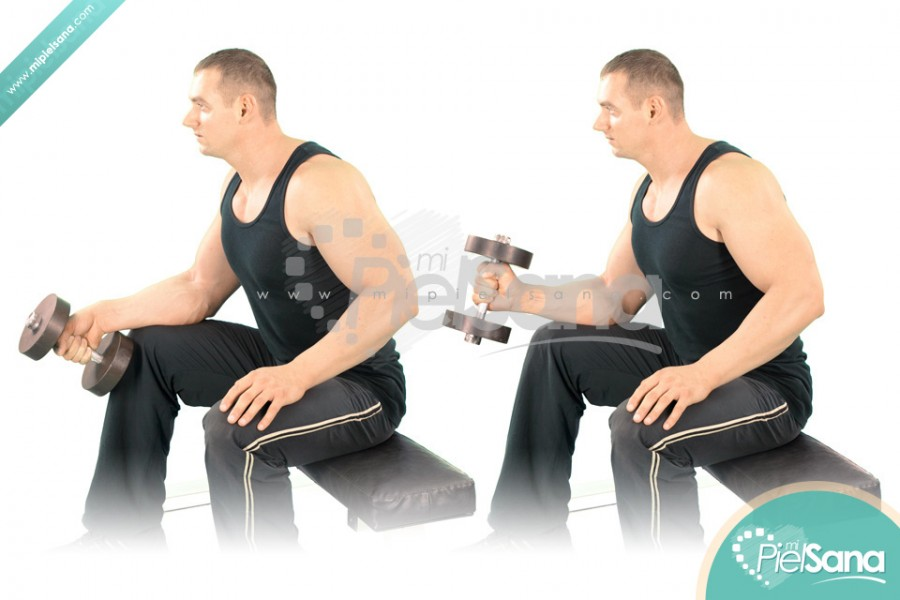 One Arm Seated Neutral Dumbbell Wrist Curl