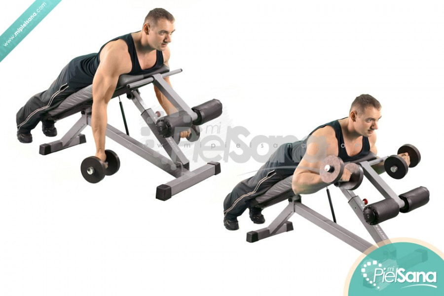 Prone Incline Dumbbell Curl