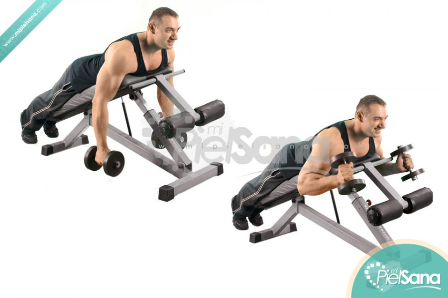 Prone Incline Hammer Curl