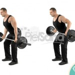 Reverse-Grip-Bent-Over-Row-900x600-150x1
