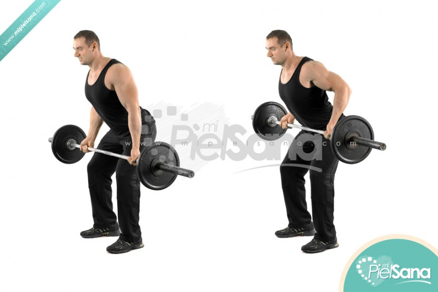 Reverse Grip Bent Over Row
