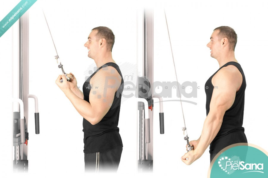 Reverse Grip Cable Tricep Extension