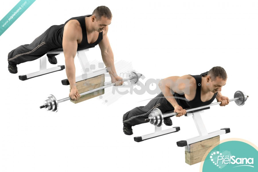 Reverse Grip Incline Bench Barbell Row
