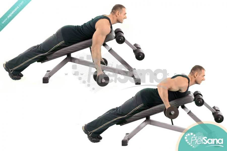 Reverse Grip Incline Bench Two Arm Dumbbell Row