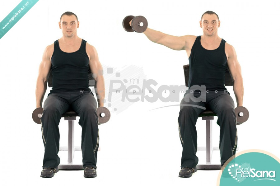 Seated Alternate Dumbbell Lateral Raise