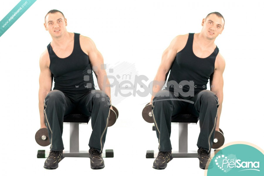 Seated Dumbbell Side Bends