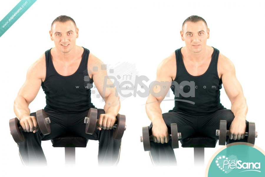 Seated Reverse Dumbbell Wrist Curl