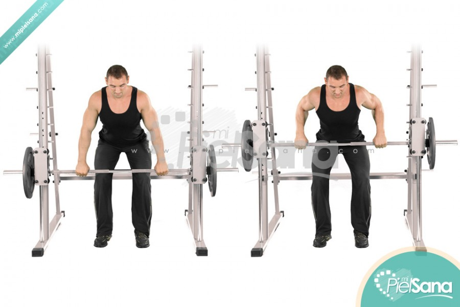 Smith Machine Bent Over Row