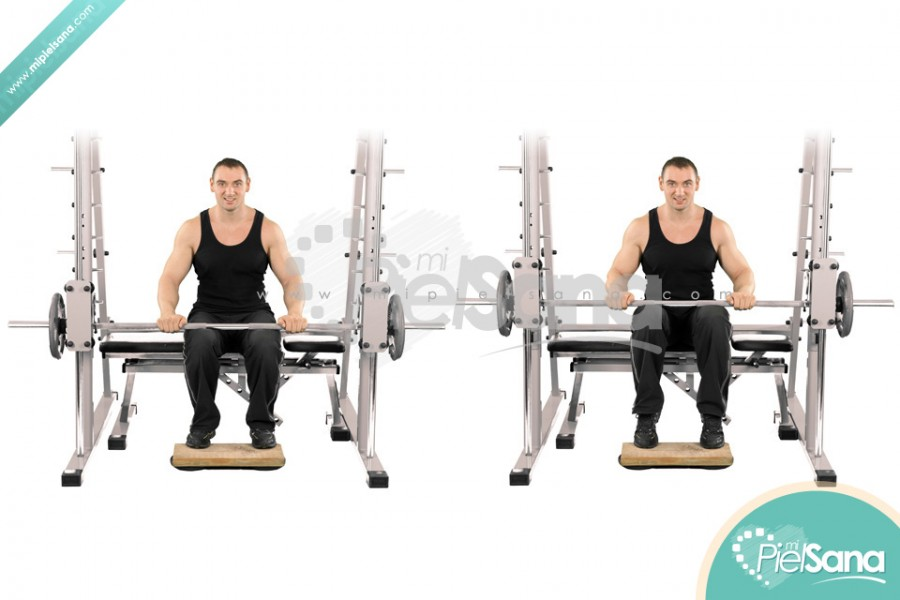 Smith Machine Seated Calf Raise