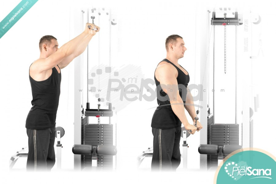 Straight Arm Lat Pull Down