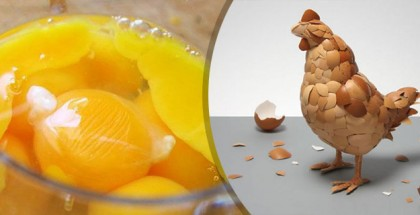 huevo crudo o cocido