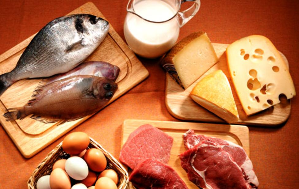 Las proteínas para adelgazar