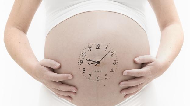 embarazo semana tras semana