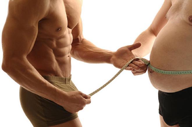 Lipognesis proceso como se toma la chia para bajar de peso mas rapido estar