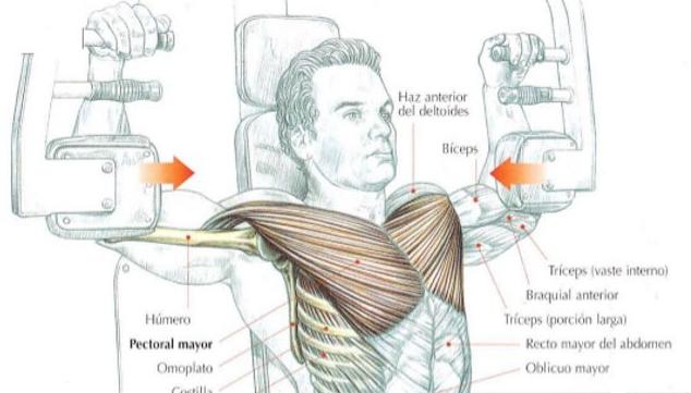 Mantra los aumentos del pecho