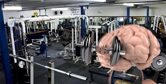 gym mejora la inteligencia