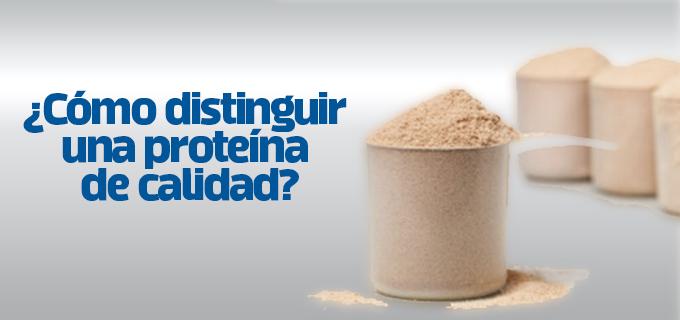 proteina de calidad