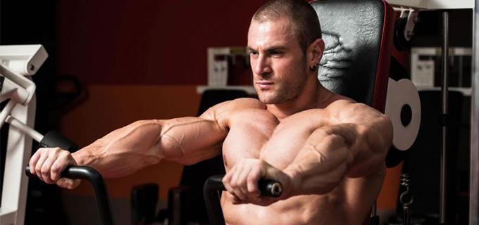 vitamina c musculo