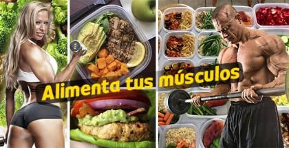 alimentos para musculo