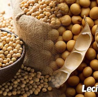 ¿Cómo tomar la lecitina de Soja para adelgazar?