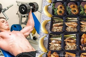 alimentacion musculo