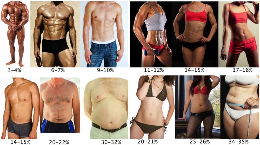 Porcentaje de Grasa Hombres y Mujeres