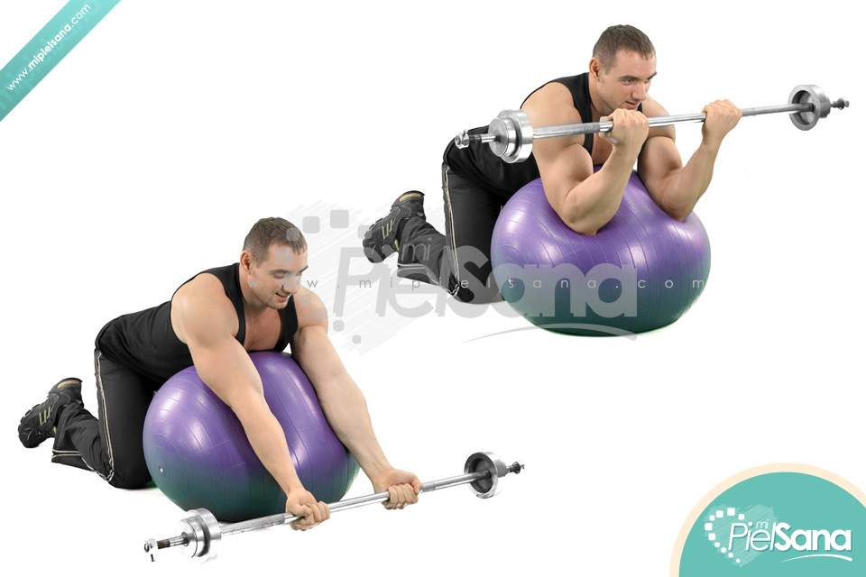 Exercise Ball Preacher Curl