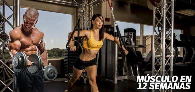 Musculo12semanas