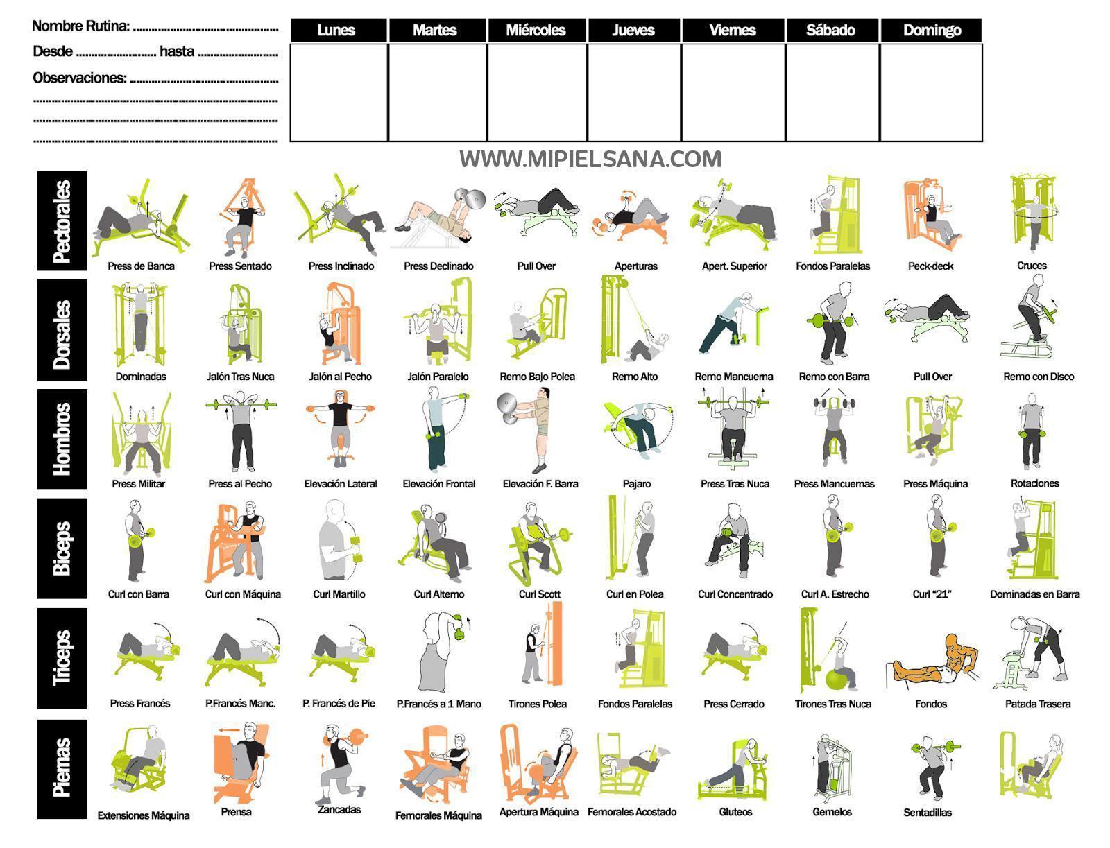formato de tabla para crear tu propia rutina de gimnasio