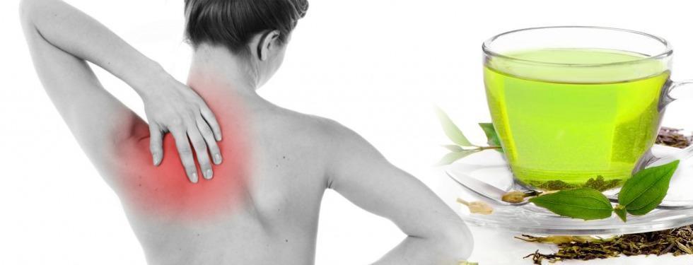 La gema oculta de Ejercicios para dolor de espalda